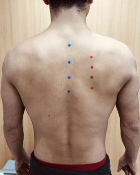 ピラティスの基本姿勢を身につけて体幹を整えましょう!~Part 2~の画像