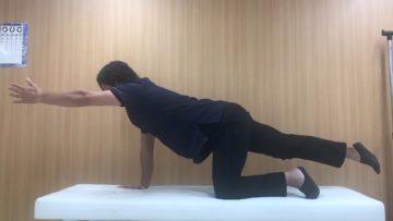 お腹と腰を鍛えるピラティスエクササイズの画像