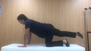 腰椎患者さんによく指導する体幹トレーニングの画像